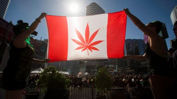 CBC News has learned that the federal government will announce the week of April 10 that new legislation will make the sale of marijuana legal by July 1, 2018.