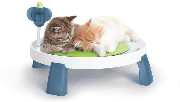 $19  Catit Design Senses Comfort Zone Cat Bed - multi-purpose massager and a li'l bit of catnip, elevated bed with a therapeutic cushion that can be cooled to provide relief for arthritic cats. The included multi-purpose massager is the perfect scratching surface for getting that itch on the back and neck, and has a separate gum stimulator that cleans teeth and strengthens gums as your pet pal chews...