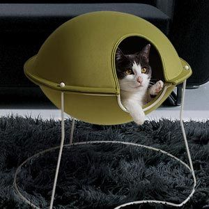 Pet bed - my cat would kill for this bed!