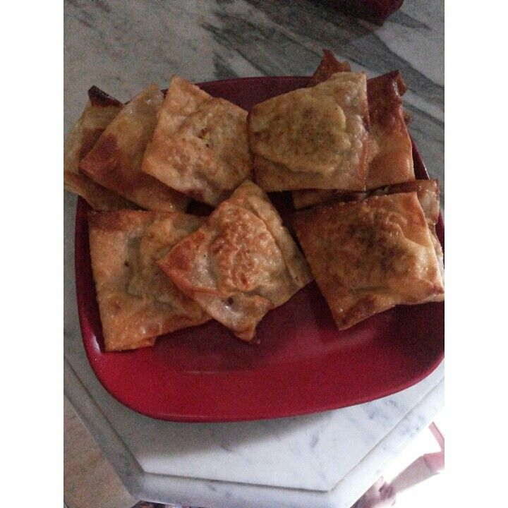 Martabak telor (indonesian food)