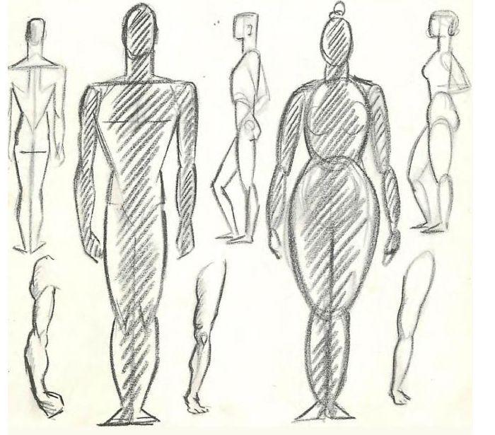 Человеческая фигура картинки