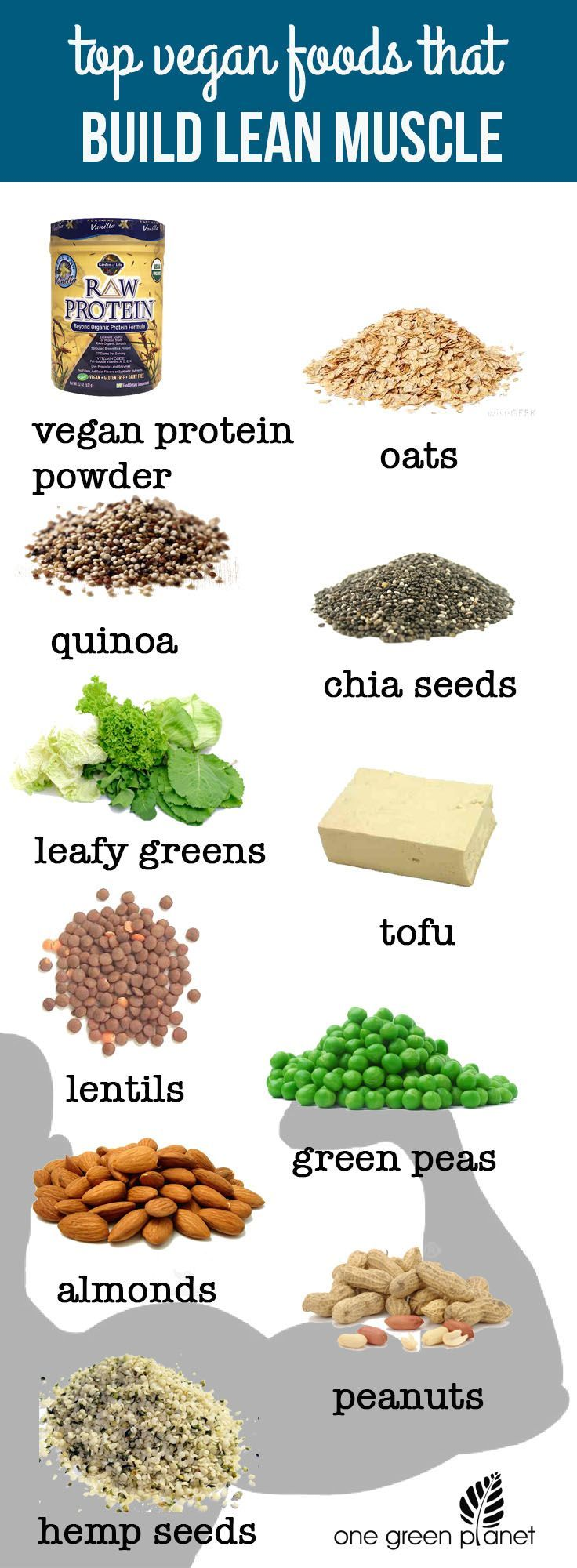 Top Vegan Foods That Build Lean Muscle http://onegr.pl/1rRlZJO #vegan #plantpowered #plantstrong