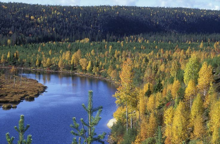 Autumn colours in Oulanka river, Oulanka National Park, Kuusamo, Lapland, Finland.
