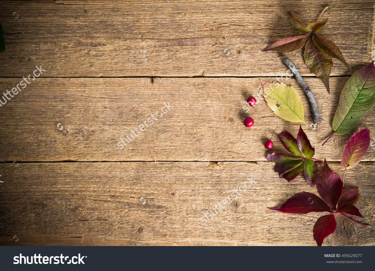 Wood background with  leaves and red berries
