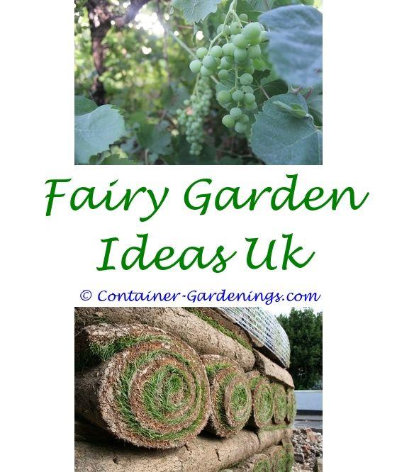 547 best Winter Garden Ideas images on Pinterest
