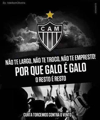 PORQUE GALO É GALO!