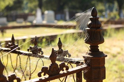 Quaker Cemetery in Camden, South Carolina dates back to around 1730