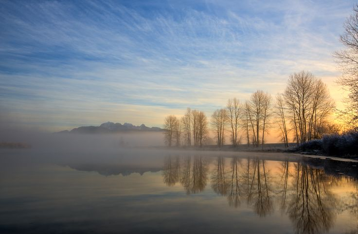 This is my favorite place to take photos in Pitt Meadows. I when I show up at sunrise, I never know what I am going to get, sometimes I can't see anything because of the fog but this day I got lucky as the fog started to burn off just as the sun was coming up.  Location: The Dikes, Pitt Meadows, British Columbia, Canada