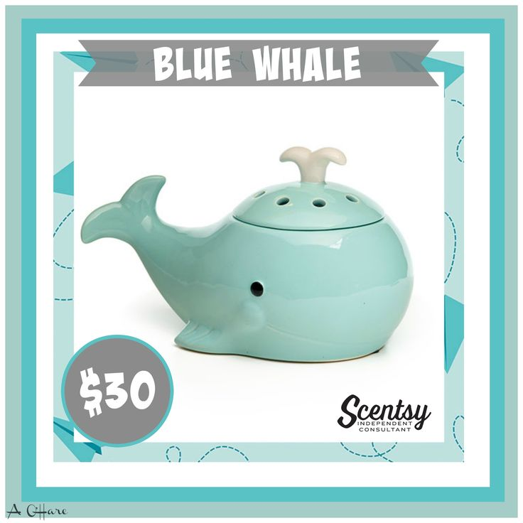 Blue Whale Warmer, available Sept. 1st. Flyer by Angela O'Hare. www.smellarific.com #smellarific