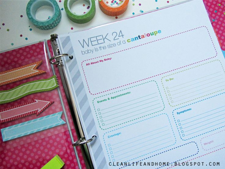 The Ultimate Pregnancy Planner: 4-42 Week Pregnancy Journal Pages, How Big is Baby?