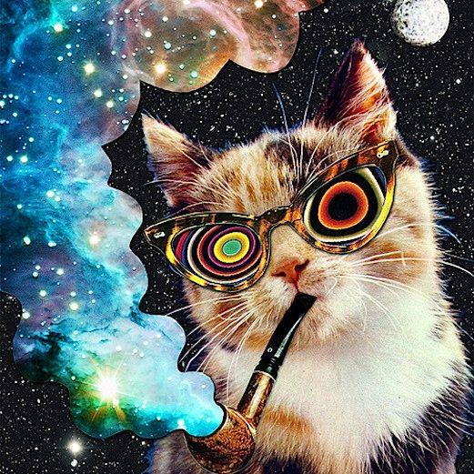 trippy cat wallpaper hd - photo #27