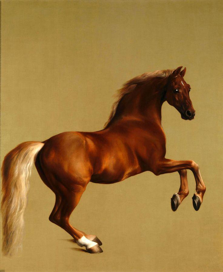 Whistlejacket- 1762