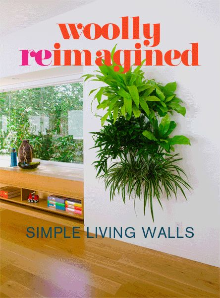 Living Wall Planter 4 Pack for £107.95