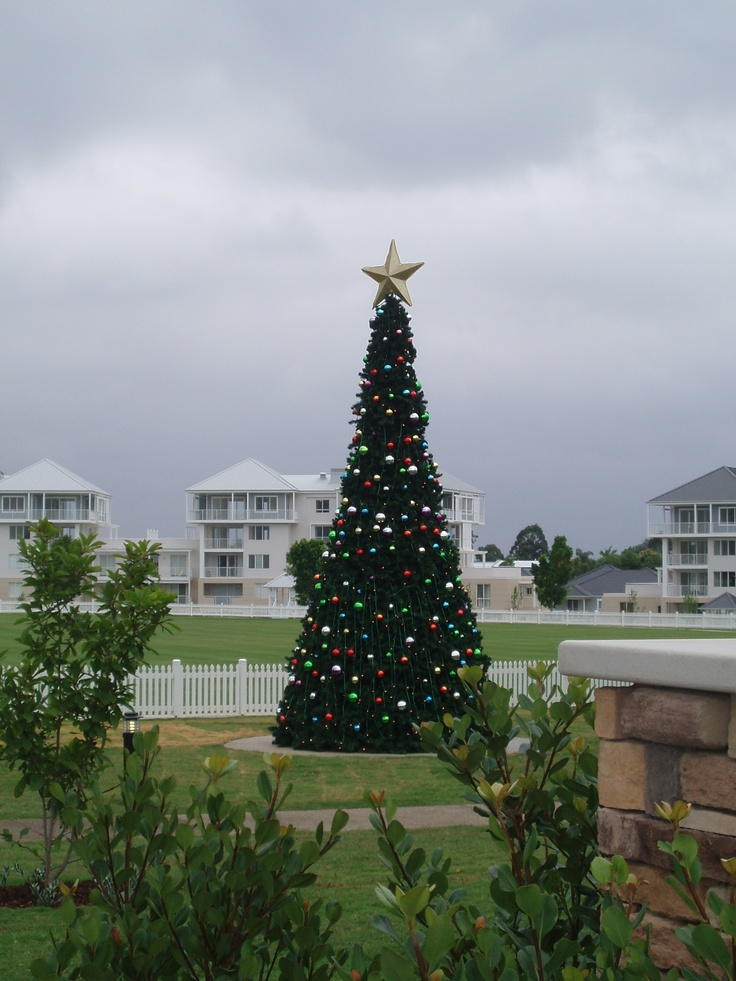 Christmas Tree at the Breakfast Point Village Green