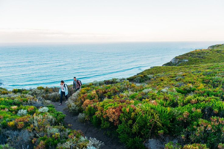 Clifftop walking on the Cape to Cape track in Margaret River #walkintoluxury
