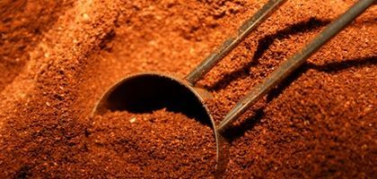 Plants & Shrubs That Like Coffee Grounds | eHow