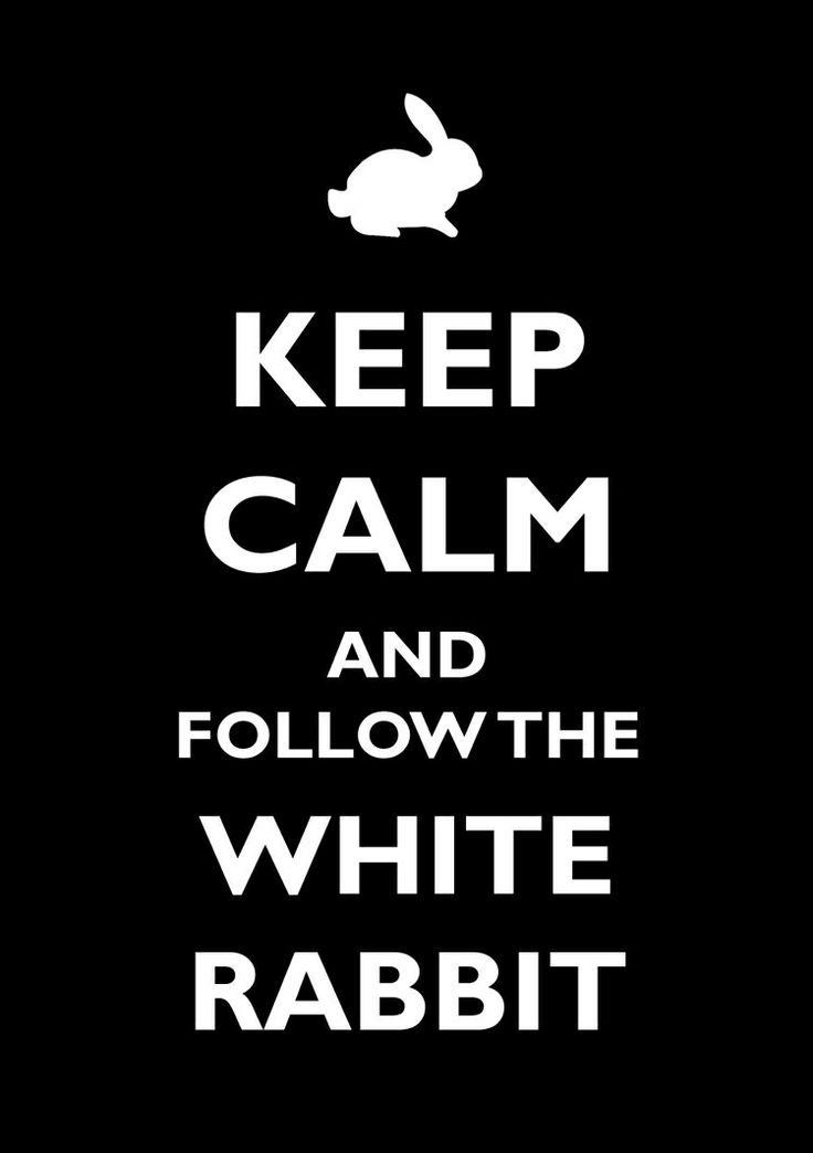 Keep calm and follow the white rabbit