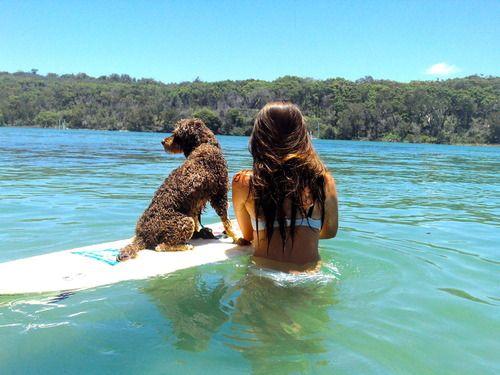 Surfer pup.