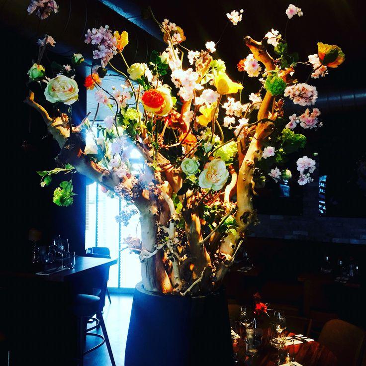 Taste the ambiance... Dok restaurant Silk-ka Flowers for Life