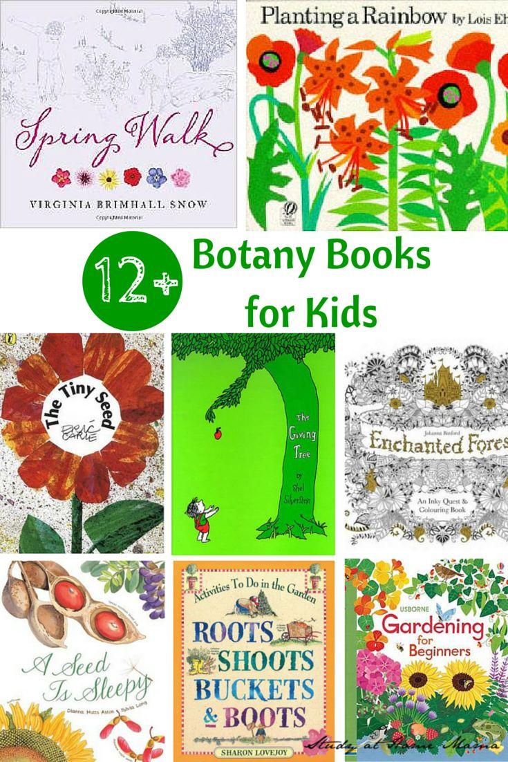 12+ Books about Botany for Kids - great books to introduce botany to kids!