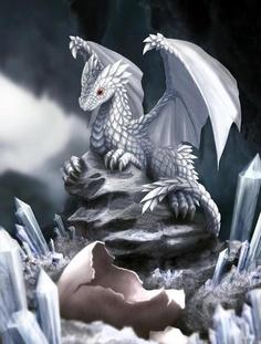 Dragones de diamante y hielo.