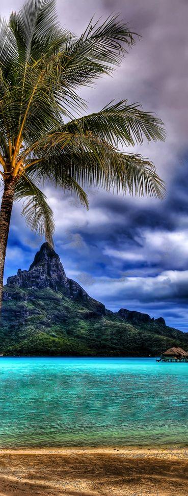 Bora Bora, French Polynesia https://hotellook.com/countries/french-polynesia?marker=126022.pinterest
