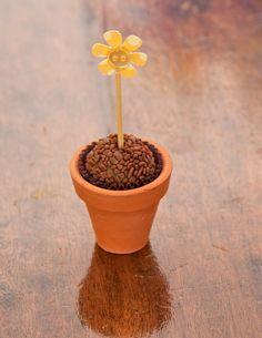 Amei!! Onde será que se consegue esse mini vasinho de terracota?