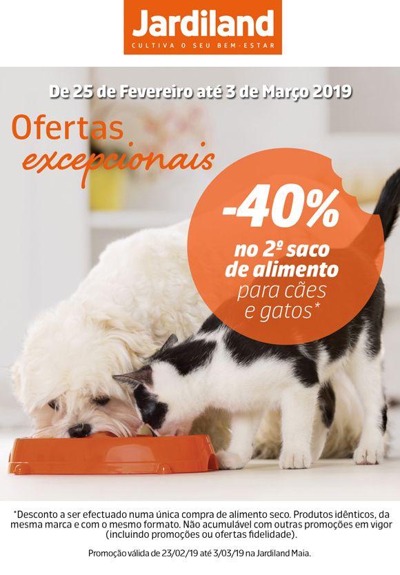 Pin De Jardiland Portugal Em Animais Caes Cao E Gato Gatos