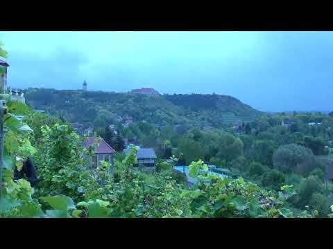 Feine Weine aus der Region Saale-Unstrut. Wein kaufen - Berlin Wannsee