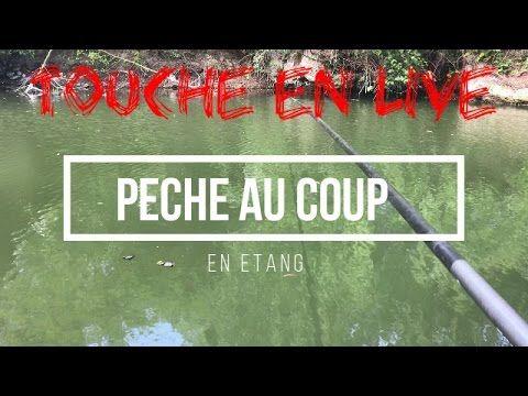 PECHE AU COUP EN ETANG #1 | | Tutotube.fr - Tutoriels pour les nuls