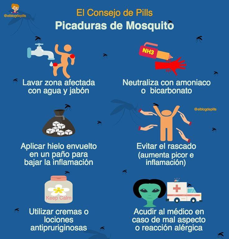 86 mejores im genes de consejo salud en pinterest - Como eliminar a los mosquitos de mi cuarto ...