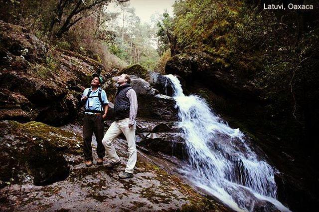 Santa Martha Latuvi es una pintoresca comunidad serrana que destaca por su belleza natural y la hospitalidad de sus habitantes, quienes brindan especial dedicación al cuidado de la naturaleza y al respeto de sus tradiciones.