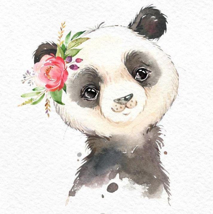 Kleiner Koala-roter Panda-Panda. Aquarell Tiere Clipart, Porträt, Blumen, Kind, niedlich, Kinderzimmer Kunst, Natur, realistisch, Freunde, Babyparty