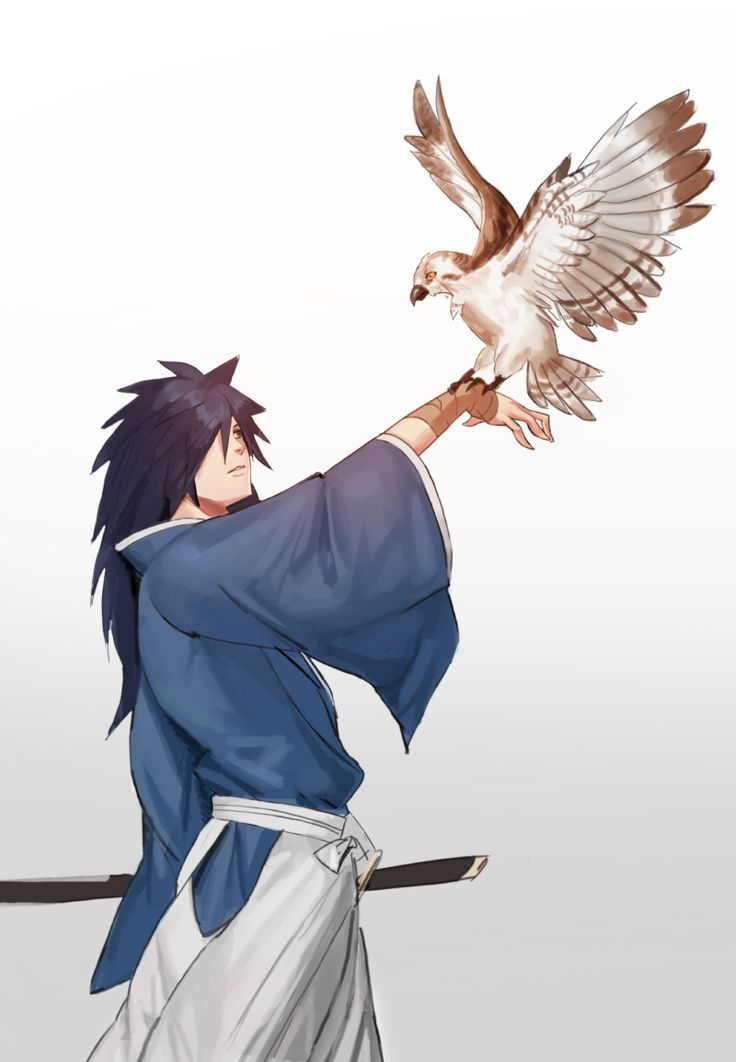 Madara Uchiha Bird                                                                                                                                                                                 More