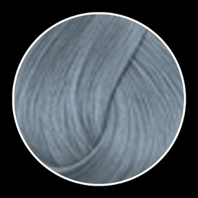 La Riche - Silver Toner Hair Color