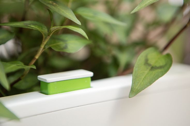 Looking for a 'set and forget' planting system? Our urban gardens feature a level indicator - which pops up to remind you to fill your planter when water levels are low. Get yours by hitting the link.  #selfwateringplanter #balconyplanter #benchplanter #glowpearplanter #summergarden #gardenideas #greenwall #verticalgarden #smallspacegardening #growyourown #veggiegarden #herbgarden #ediblegardening #urbangardening #permaculture #homegrown #kitchengarden #homegrown #urbanfarming