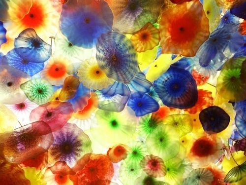 Mika Ninagawa (and jellyfish ^^)