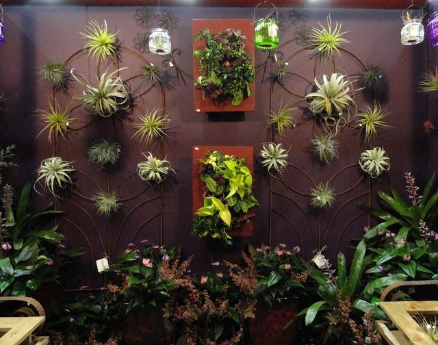 Display Ideas Gorgeous Wall Garden