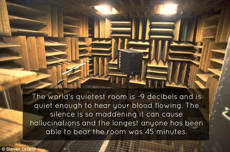 The anechoic chamber is located at Orfield Laboratory in Minneapolis, Minnesota and was designed for testing out hearing aid equipment. To make sure no outside noises are present, the chamber is hidden behind two vault doors and has sound-deadening wedges covering all of the flat surfaces. Rather than sound bouncing off the walls, ceiling, and floor like a traditional room, the sound is absorbed.
