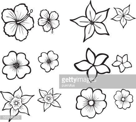 Vector Art : Tropical Flower Line Art