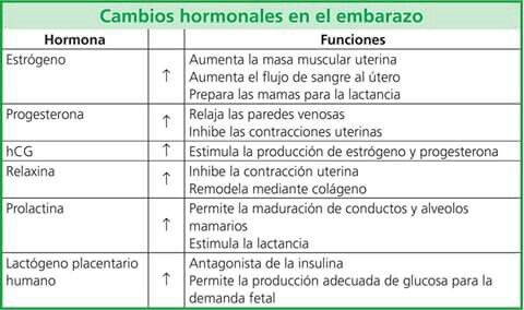 Cambios hormonales embarazo