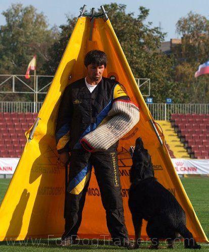 Sheila Booth Dog Training