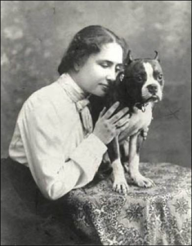 Pit Bulls make great therapy and service dogs. Helen Keller even had a Pit Bull as her canine companion and helper.