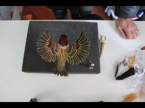 How to Needle Felt Song Birds: Part 2 by Sarafina Fiber Art - YouTube