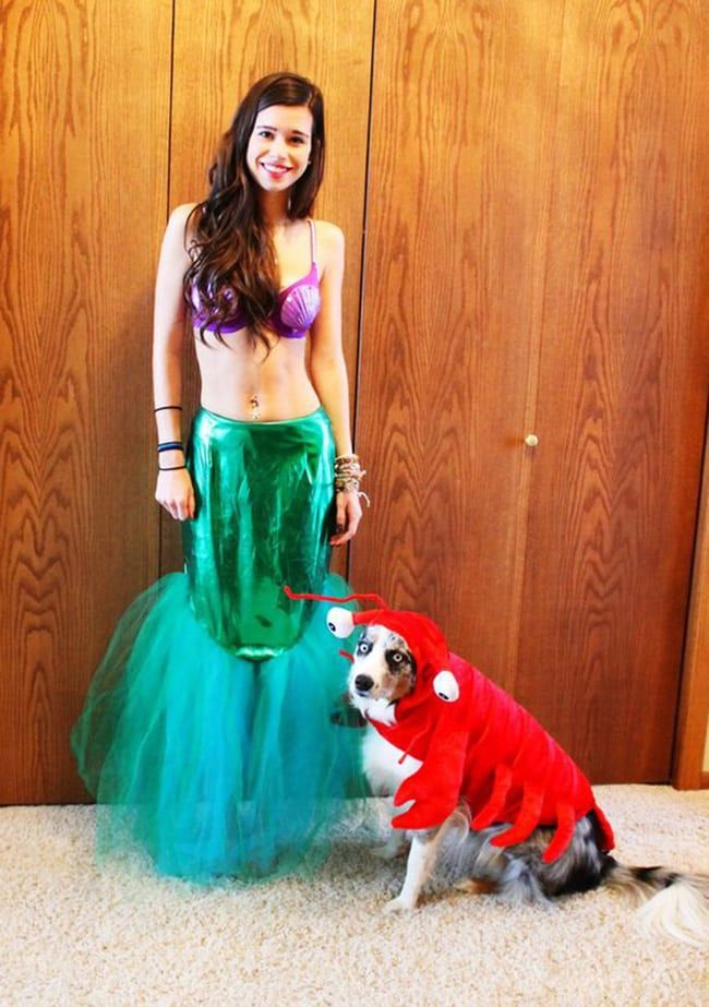Petrifying Pets Matching Pet And Owner Halloween Costumes Pet