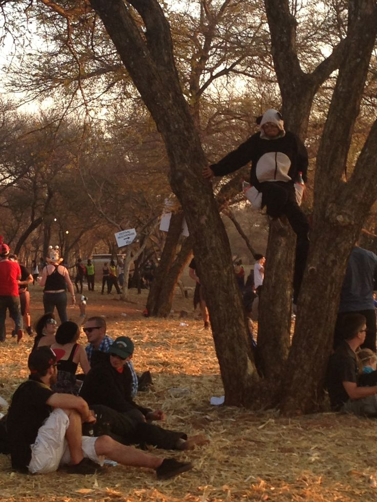 Spot the panda... #StandardBank #Oppikoppi2013