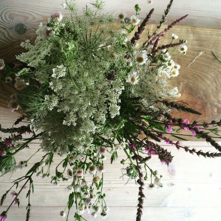 Bouquet. Fiori spontanei