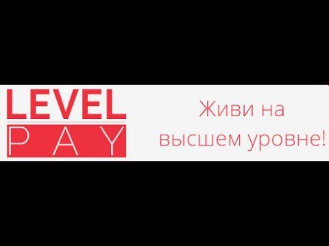 Level Pay 1 я Запись конференции от 1. 12. 15. Маркетинг - ответы на воп...