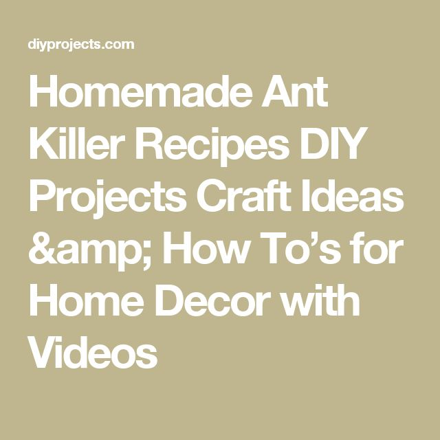 Homemade Ant Killer Recipes DIY Projects Craft Ideas & How To's for Home Decor with Videos