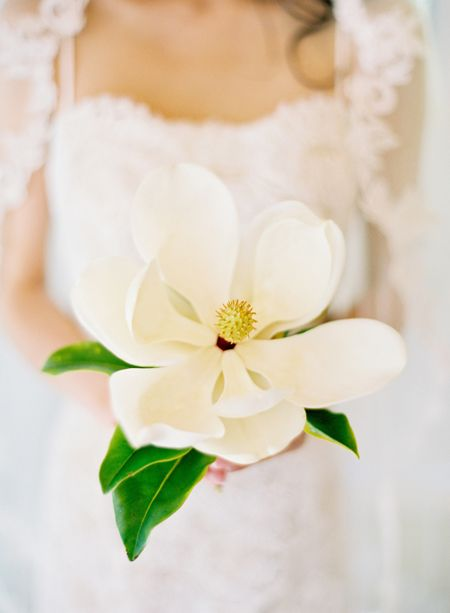 Single bloom magnolia wedding bouquet ... Wedding ideas for brides, grooms, parents & planners ... https://itunes.apple.com/us/app/the-gold-wedding-planner/id498112599?ls=1=8 ...The Gold Wedding Planner iPhone App.